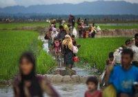 Мусульман-рохинджа переселят на необитаемый остров