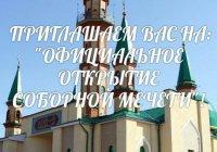 Муфтий откроет в Зеленодольске Соборную мечеть