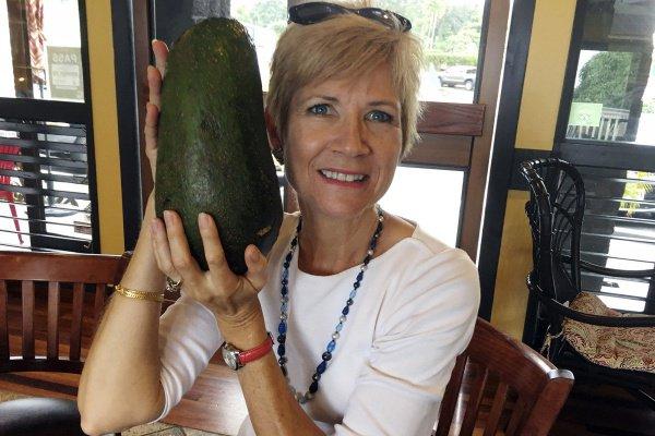 «Самого большого авокадо в мире» в Книге Гиннеса пока нет