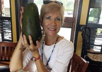 Найден самый большой авокадо в мире
