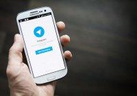 Telegram оштрафовали из-за питерских террористов