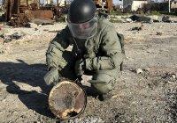 Из Сирии вернулась команда российских саперов