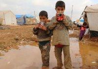 Путин о детях в ИГИЛ: Мы не можем их там бросить