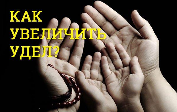 «И тот, кто боится Аллаха, Аллах найдет ему выход из любого положения, и даст ему удел оттуда, откуда он не ожидал»