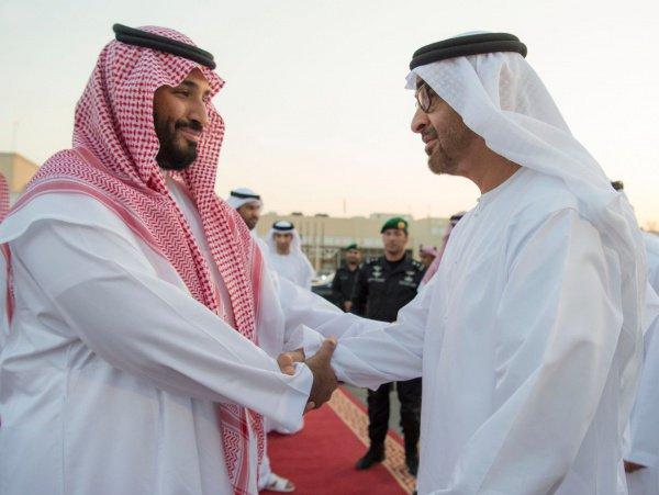 принц Саудовской Аравии Мухаммад бен Салман и принц Абу-Даби Мухаммед бен Заиди