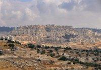 В Израиле бабушка попыталась помирить полицию и палестинцев (ВИДЕО)