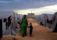 Сирийские беженцы обратились за помощью к России
