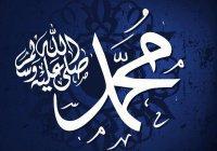 Какое качество было самым главным в характере Пророка (ﷺ)?