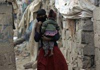 ООН: В Йемене за 10 дней погибли 115 мирных жителей
