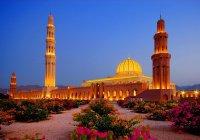 Назначен новый посол России в Омане
