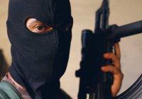 40 тыс. человек вошли в базу данных иностранных террористов Интерпола