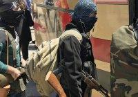 В России разработают механизм для борьбы с миграцией боевиков