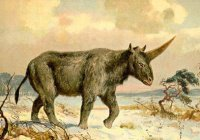 Обнаружен последний казахский единорог