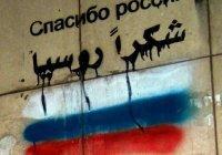 Эксперт рассказал, что даст России победа в Сирии
