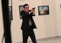 В Турции арестовали организатора выставки, на которой застрелили посла РФ Карлова