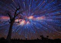 Астрономы на новогодние праздники обещают мощный звездопад