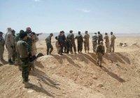 Власти Сирии начали переговоры с «Джебхат ан-Нусрой»