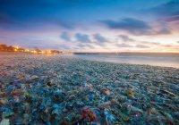 Остров Бали утонул в мусоре