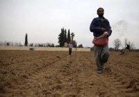 Мусульмане Сирии молятся об окончании засухи