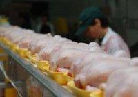 ОАЭ запретили ввоз мяса и птицы из России