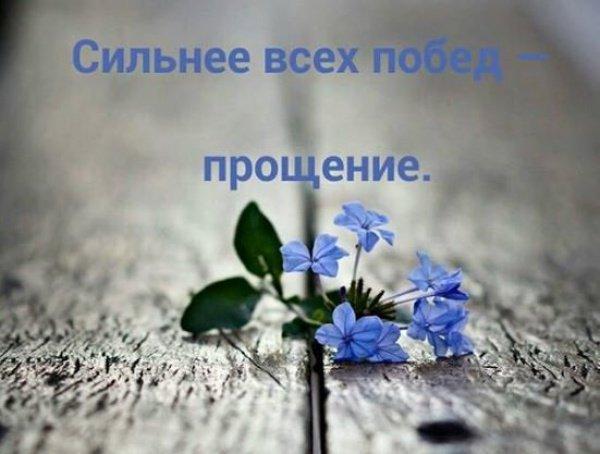 «Прощайте и будете прощены»