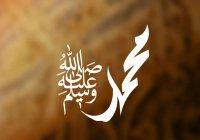 Уроки жизни на основе сиры Посланника Аллаха (ﷺ)