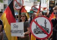 Турция начала расследование исламофобии в Европе