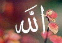 Пути, ведущие к любви к Аллаху