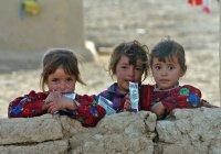 Власти Ирака: детей из России и СНГ продавали боевикам ИГИЛ