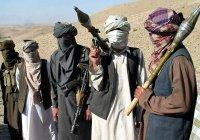 Талибов уличили в совершении терактов от имени ИГИЛ