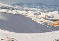 Эксперты: ежегодный снег в Сахаре – предвестник глобального потепления
