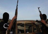 Около 60 боевиков ИГИЛ вернулись в Канаду из Сирии и Ирака