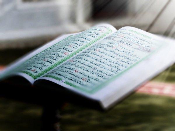 Аят Корана является Источником, а Сунна – подтверждением.