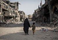 Ирак подсчитал ущерб от ИГИЛ