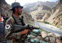 Власти Афганистана начинают переговоры с «Талибаном»