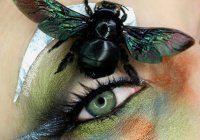 Блогер из Калифорнии делает макияж с настоящими насекомыми (ФОТО)
