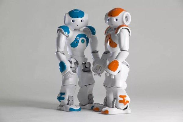 Виктор Садовничий поясняет, что роботизация, бесспорно, приведет к тому, что изменится число занятых в разных направлениях труда людей