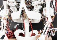 Робот, выращивающий органы, создан в США