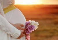 Ученые из Австралии рассказали об опасности беременности для мозга