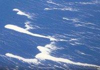 Зафиксирована крупнейшая подводная катастрофа в истории
