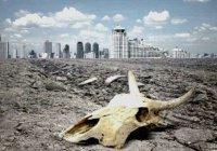 Ученые сообщили, когда вымрут млекопитающие