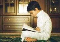 Сатр: условия, последствия и воспитание