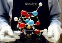 Ученые воссоздали ДНК 200-летнего человека