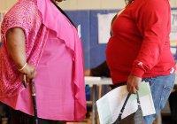 Ученые назвали безопасный способ похудеть