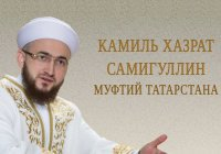 Заблуждения ибн Таймии. Часть 2