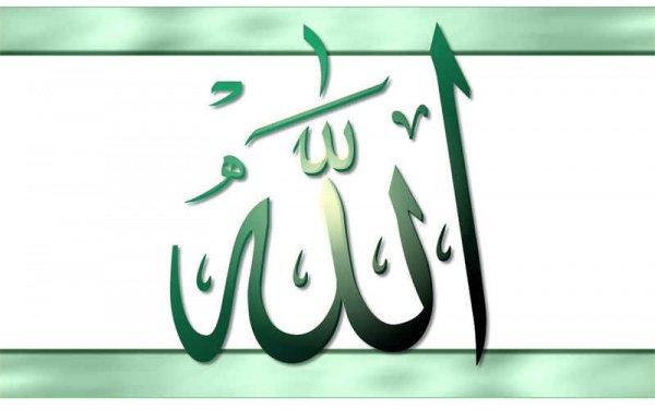 «Если Мой раб полюбит Меня и проявит терпение перед бедами, в ответ на это Я дарую ему Рай»