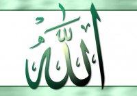"""Аллах сказал: """"Я был болен, а вы не пришли проведать меня..."""" Что значат эти слова?"""