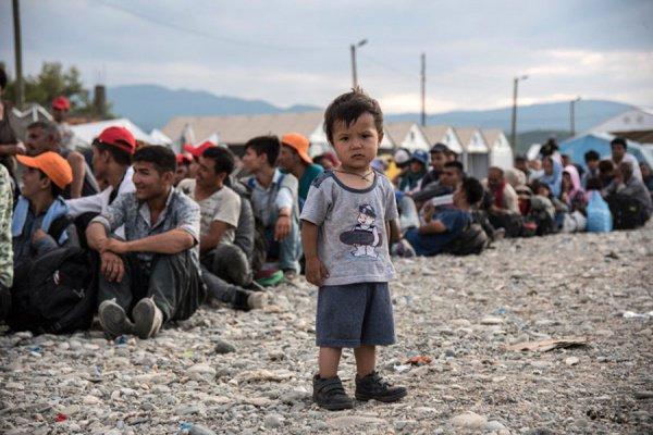 Бельгия приняла менее четверти от обещанного количества беженцев.