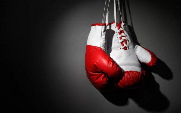Профессиональный бокс и прежде находился под строгим контролем правительства Швеции