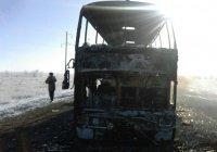 Родным сгоревших в автобусе узбекистанцев собрали 60 миллионов